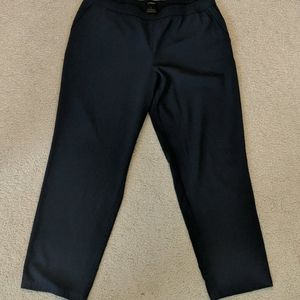 Ann Taylor Dress Pants Sz. L